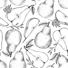 Hand Drawn Vector Seamless Pattern - Set Of Sliced Pear, Pears And Leaves. Design Elements In Sketch Style. Perfect For Menu, Cards, Posters, Prints, Packaging
