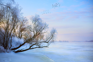 Fototapeta na wymiar beautiful winter background; winter landscape On A Hoar Frost
