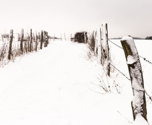 A Path Covered With Snow Betwe...
