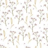 Piękny wzór bez szwu z ręcznie rysowane delikatne rośliny. Tło wektor kwiatowy. Papier do pakowania. - 134369963