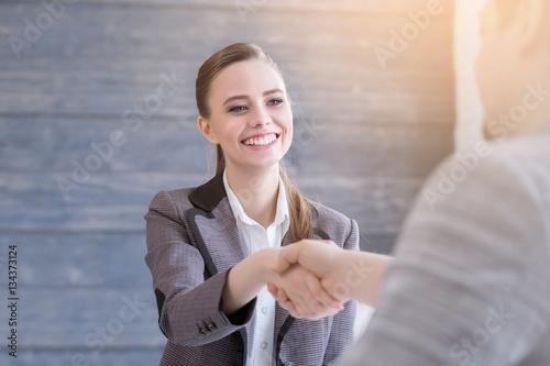 Fotografie, Obraz  Business People Handshake Greeting Deal Concept
