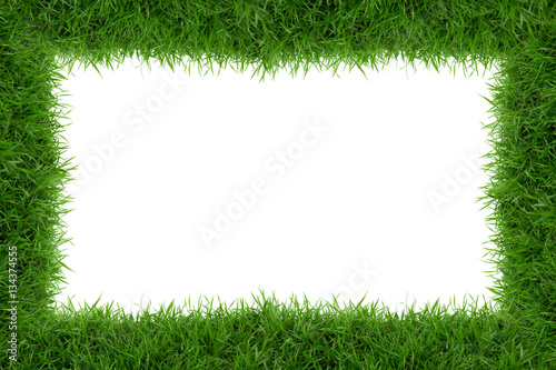 Grass frame isolate on white background.