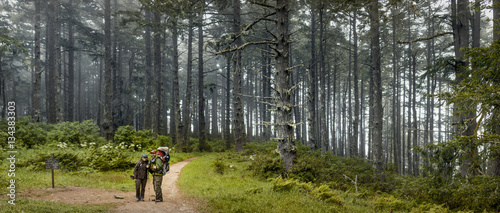 People on a trail through a woodland.