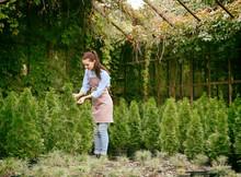 Pretty Young Gardener Looking ...