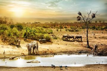 South African Safari Wildlife Fantasy Scene