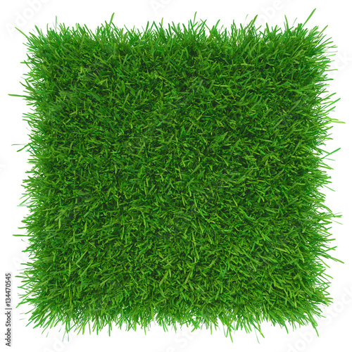 Deurstickers Groene Green grass. natural background texture. high resolution. 3d rendering