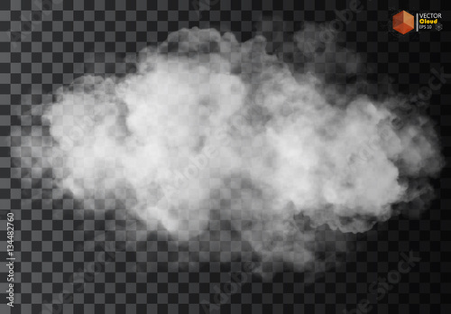 Obraz Fog or smoke isolated transparent special effect. White vector cloudiness, mist or smog background. Vector illustration - fototapety do salonu