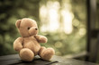 bear doll on the table in the nature with dramatic tone