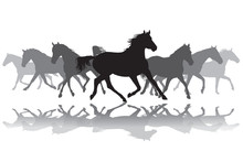 Trotting Horses Silhouette Bac...