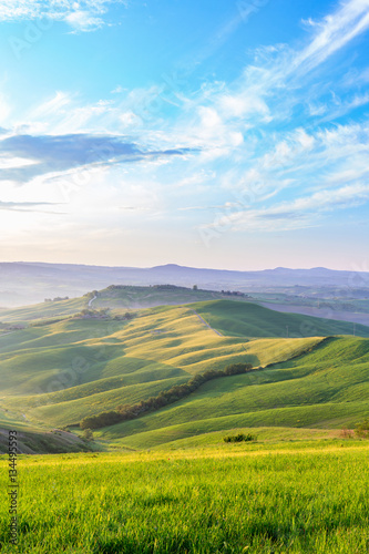 Morning light in a rolling Tuscan landscape in Italy Poster