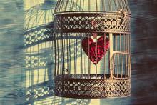 Heart Inside The Bird Cage. Vi...