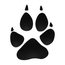 Gray Wolf Tracks - 3D Animal Footprint