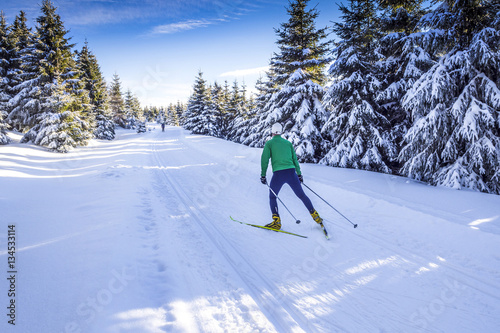 Poster Winter sports Langlaufen in Winterlandschaft