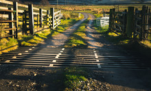 Cattle Grid In Cumbria