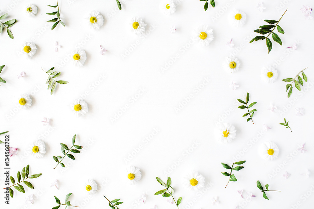 Fototapety, obrazy: Frame of chamomiles, branches, leaves and lilac petals on white background. Flat lay, top view