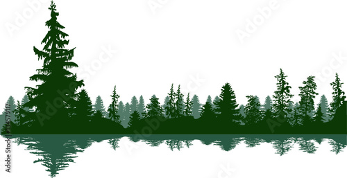 fir trees green forest panorama on white © Alexander Potapov