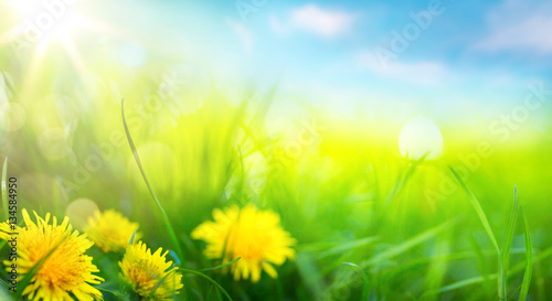 Poster Geel art abstract spring background or summer background with fresh g