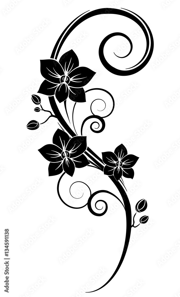 Photo Art Print Orchids Wall Tattoo Black Europosters