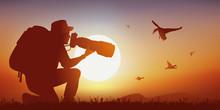Photographe Animalier - Canard - Coucher De Soleil