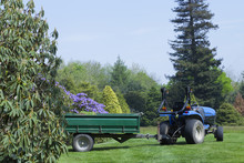 Tractor With A Trailer Loaded With Turf, Helping In Spring Gardening