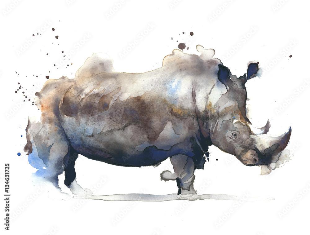 Nosorożec afrykańskiego safari akwareli obrazu zwierzęca ilustracja odizolowywająca na białym tle