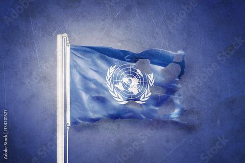 Fotografie, Obraz  Torn flag of the United Nations waving against grunge background