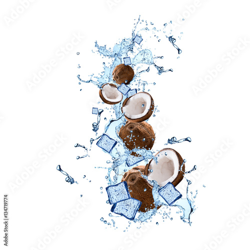 Garden Poster Palm tree Water splash with coconut isolated on white background. Abstract object. Fresh fruits.