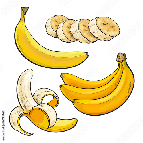 Sliced Peeled Singl And Bunch Of Three Ripe Banana Sketch Style Vector Illustration