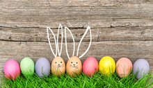 Easter Eggs Cute Bunny Funny Decoration Happy Easter