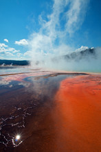 Grand Prismatic Spring In Yellowstone National Park In Wyoming USA