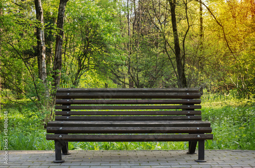 Photo bench in spring park