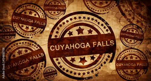 Fotografie, Obraz  cuyahoga, vintage stamp on paper background