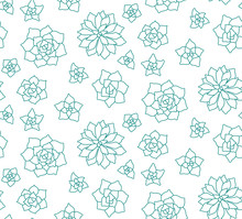 Line Art Succulent Plant Seamless Pattern On White Background