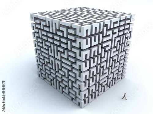 Fototapeta 3D Illustration of a woman about to enter a 3D maze