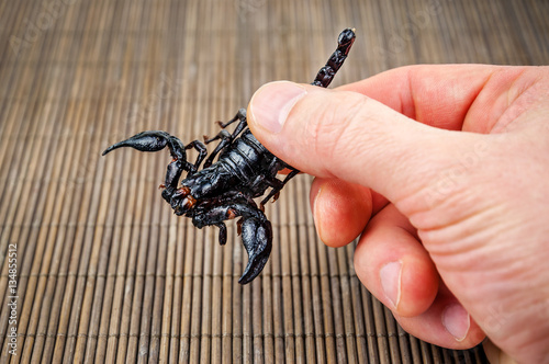 delicious fried scorpion