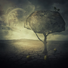 Surreal Background As A Bizarre Pear Tree With A Big Rock Instead Of The Leaves Crown, Placed In The Middle Of A Cracked Desert Ground Of Another Planet.