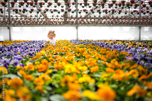Girl looking at pansies in greenhouse