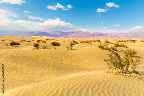 Poster de jardin Desert de sable Sand dunes against mountains on background