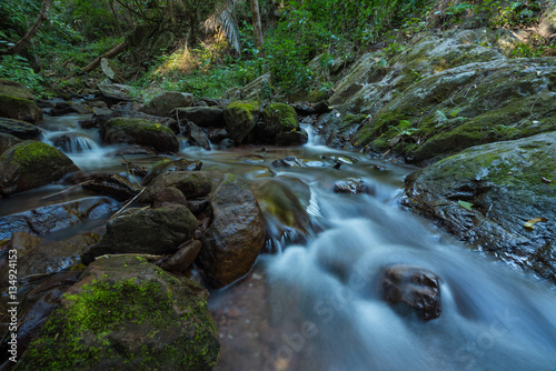 Printed kitchen splashbacks River The stream flows from Jum Pan Tong waterfall is located in Doi Luang national park, Baan Tum subdistrict of Payao province, Thailand.