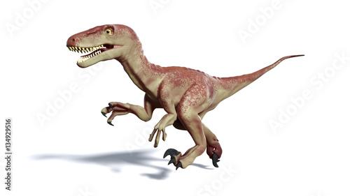 Photo  running Dromaeosaur dinosaur (3d illustration isolated with shadow on white back