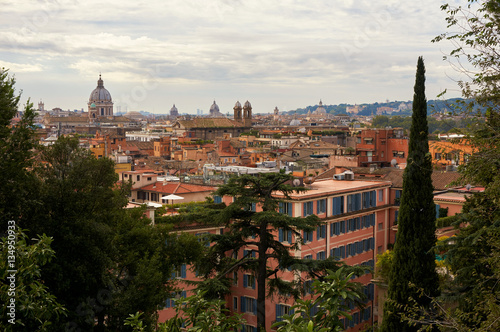 Foto op Aluminium Florence Vatican View
