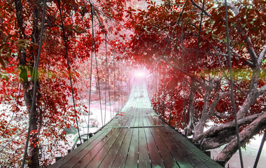 FototapetaFinish or Goals Line Concept. Lights at The End of Perspective Hanging Wooden Bridge as a Walkway Along with Fantasy Autumn Red Leaves of Trees and over The River in National Park of Ranong, Thatiland