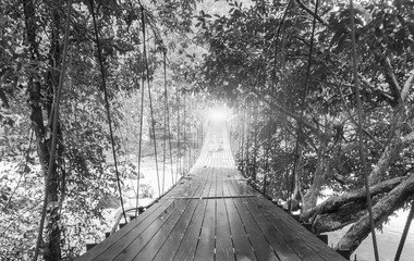 FototapetaFinish or Goals Line Concept. Lights at The End of Perspective Hanging Wooden Bridge as a Walkway Along with Fantasy Monotone Grey Leaves of Trees over The River in National Park of Ranong, Thatiland