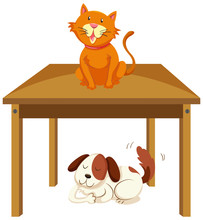 Cat On The Table And Dog Under...