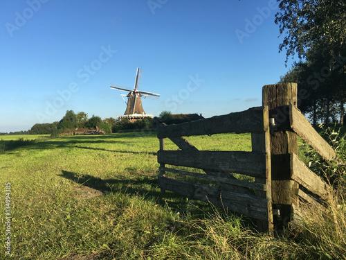 Poster Dog Windmill De Hond