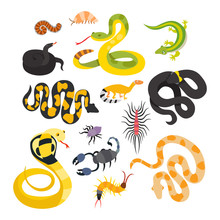 Vector Flat Snakes And Other D...