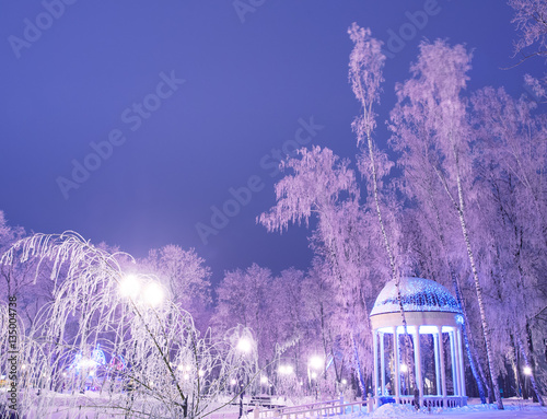 Aluminium Prints Amazing winter landscape in evening park. Gazebo, lantern lights