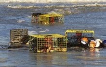 Crab Traps Washed Up On St. Pete Beach Florida After A Strong Storm.