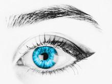 Black And White Woman Blue Eye