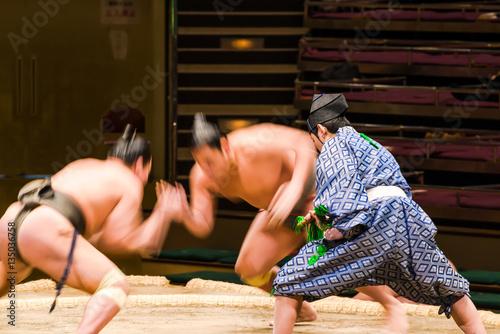 Fotomural  相撲の行司
